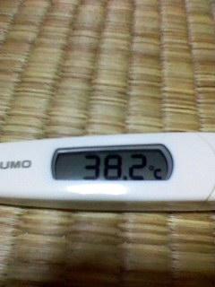 熱が出ました